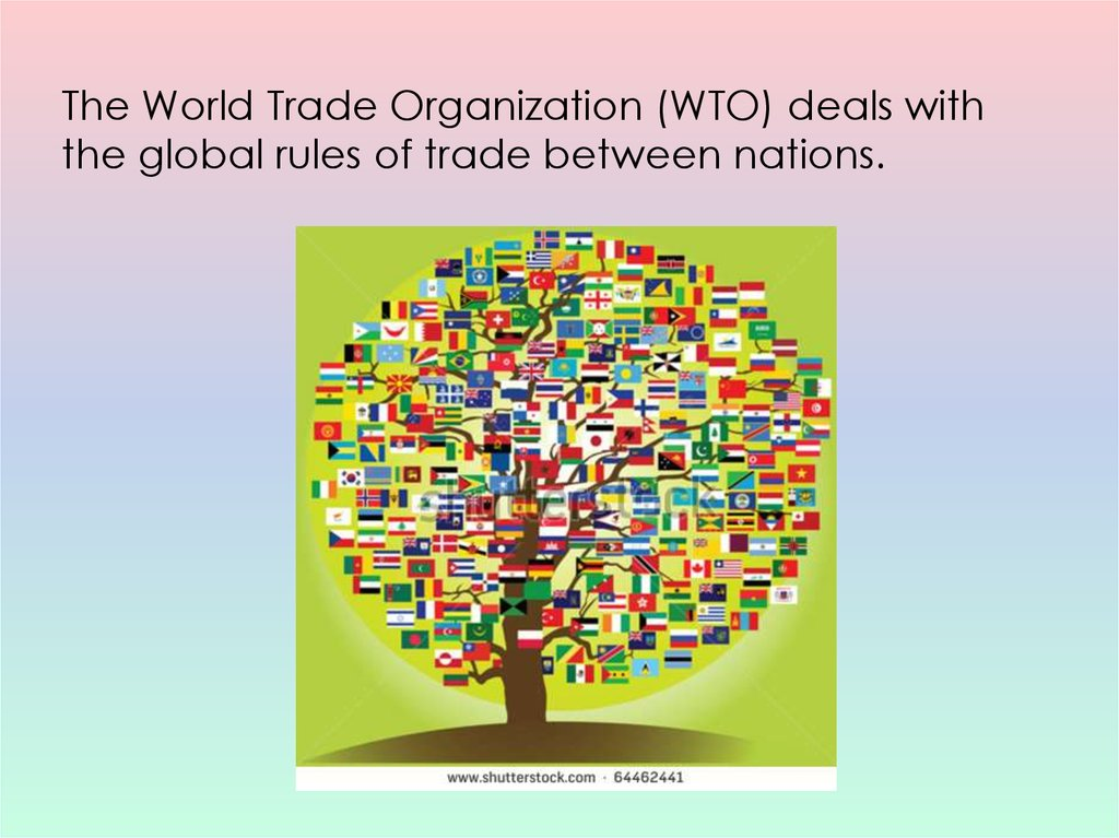 an analysis of the world trade organization Abebookscom: the world trade organization: legal, economic and political analysis (vol 1-3) (9780387226859) and a great selection of similar new, used and collectible books available now at great prices.