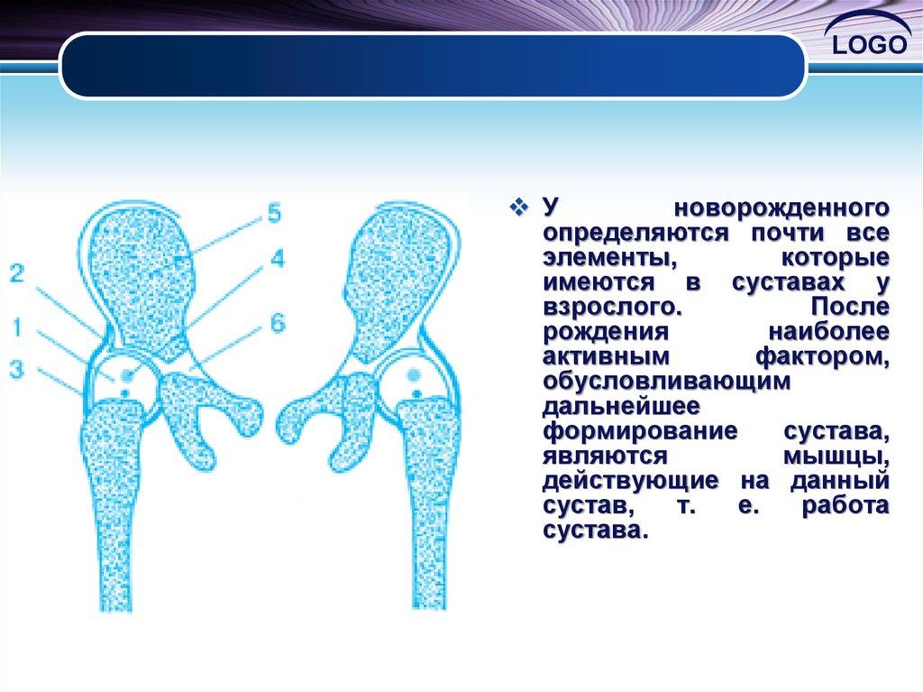 Суставные поверхности как отрезки геометрических тел вращения ревматоидный артрит коленного сустава мкб 10