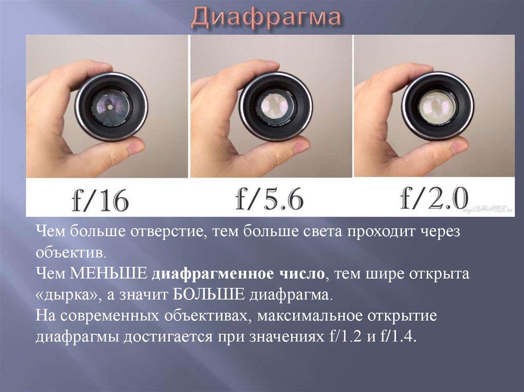 этот что такое диафрагмальная в фотоаппарате содержании холодном помещении
