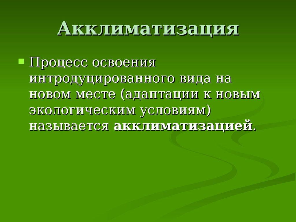 СИОжегов НЮШведова Толковый словарь русского языка АД