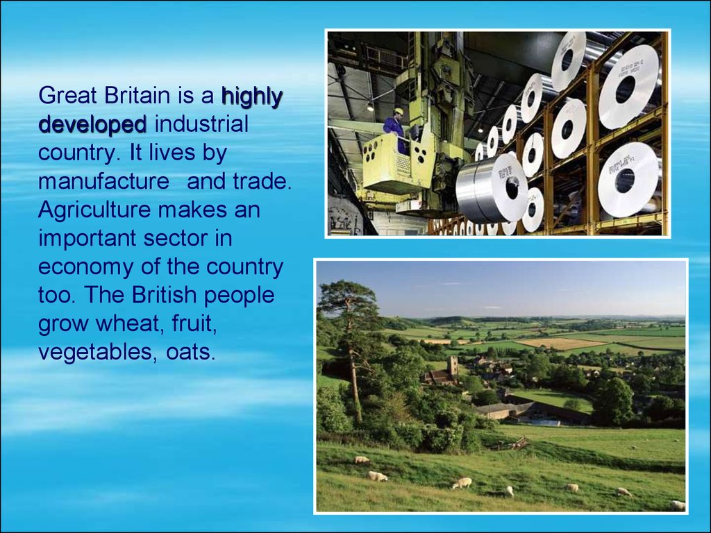 Great Britain is a highly developed industrial country. It lives by manufacture and trade. Agriculture makes an important sector in economy of the country too. The British people grow wheat, fruit, vegetables, oats.