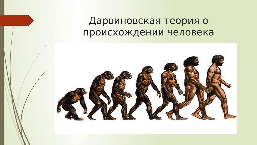 прочтения картинка на тему происхождение человека качественно зафиксировать смартфон