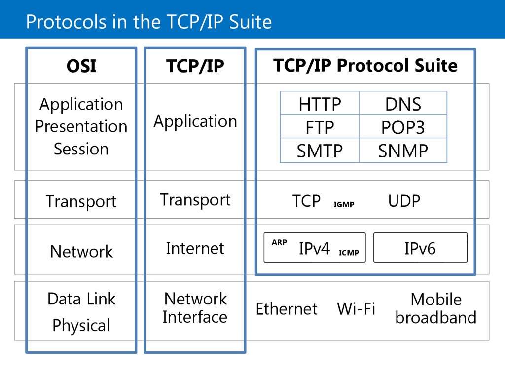 Protocols in the TCP/IP Suite