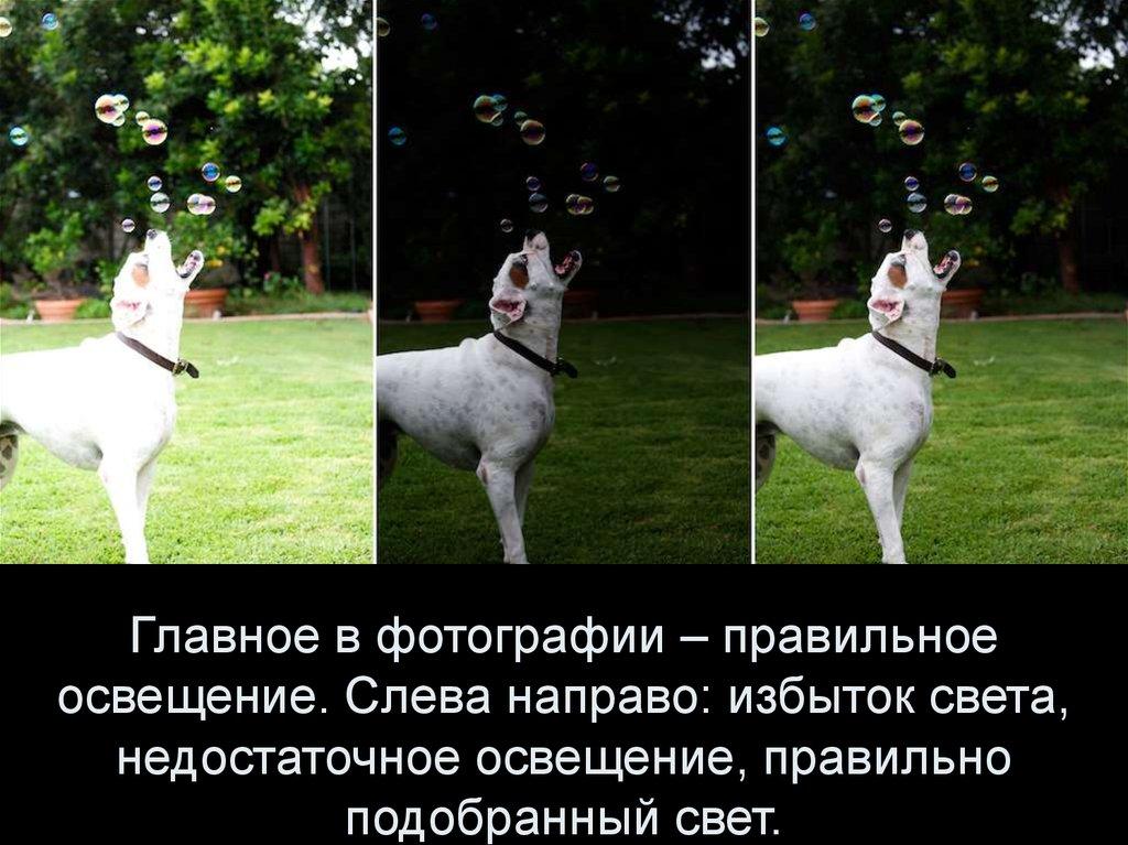 Главные правила фотоснимков