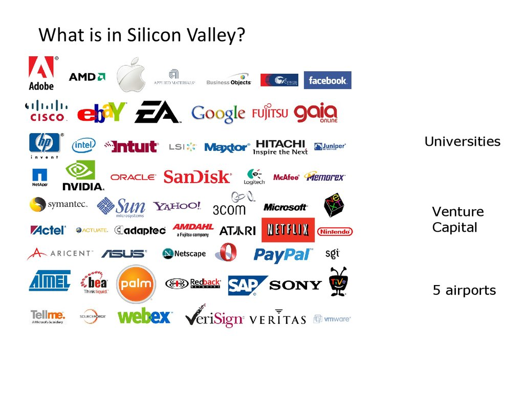 What is in Silicon Valley?
