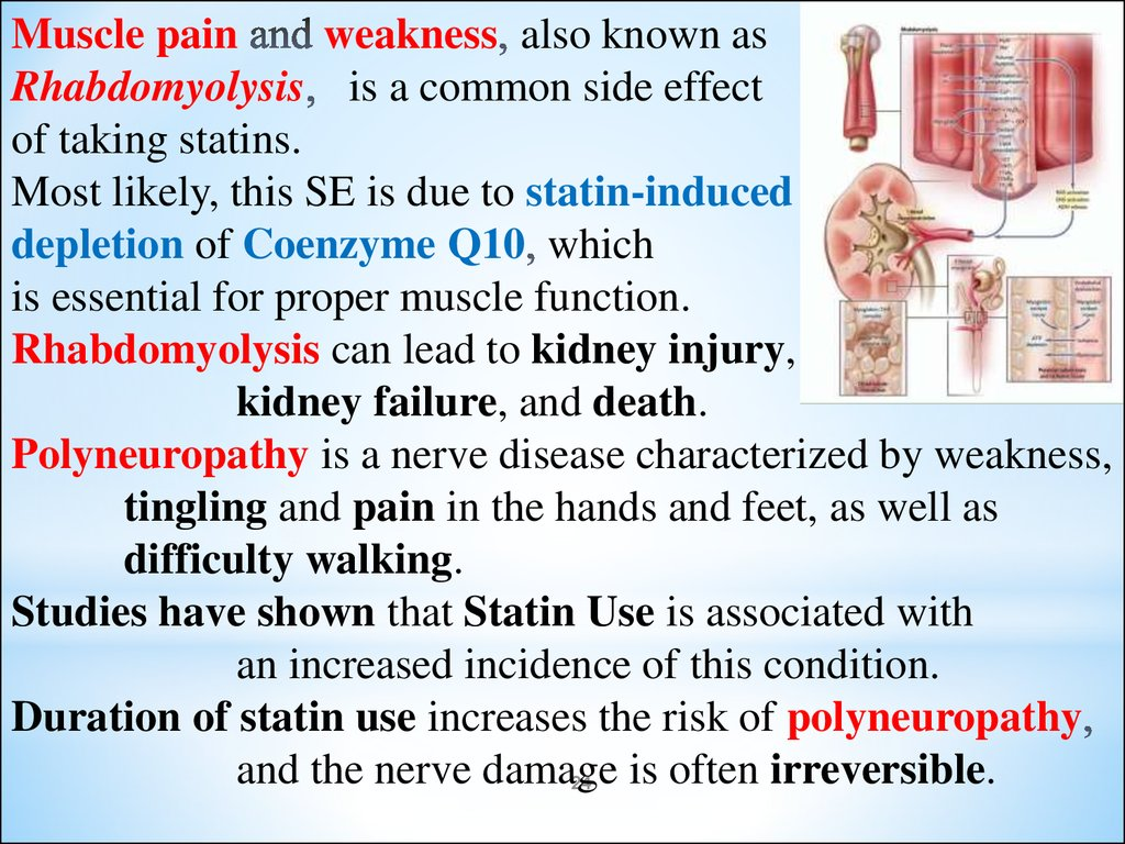 Side effects of drugs affecting cardiovascular system