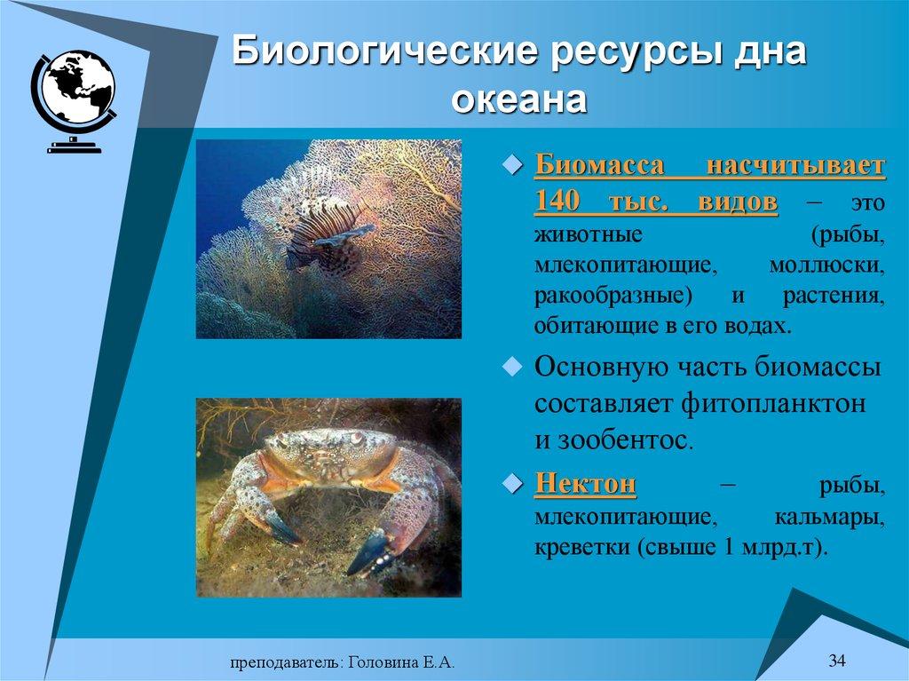 Минеральные и биологические ресурсы тихого океана