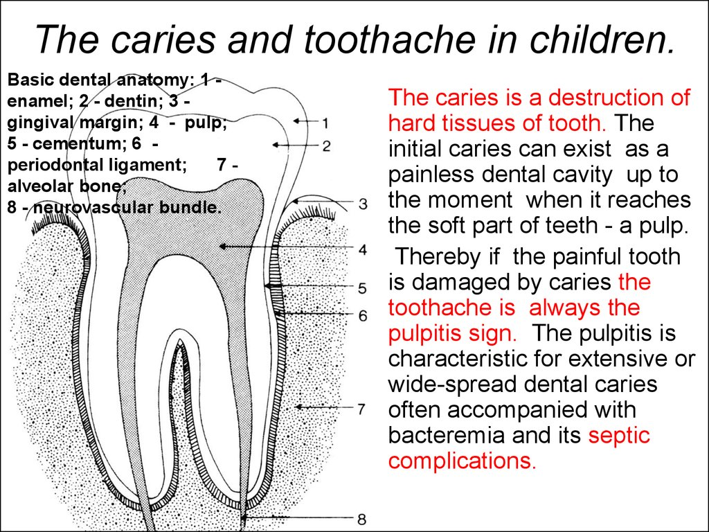 The caries and toothache in children.