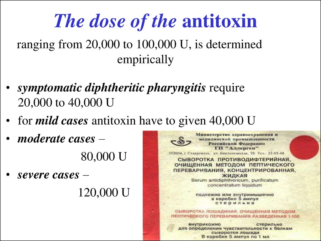 The dose of the antitoxin