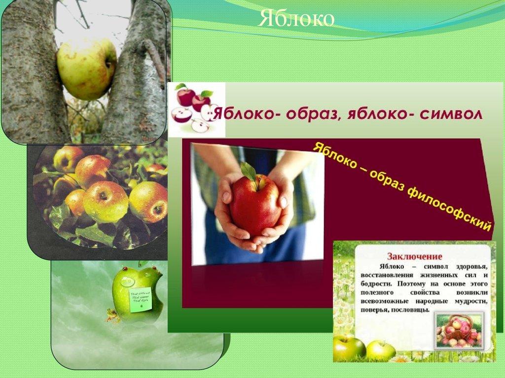 пословицы про яблоки и здоровье