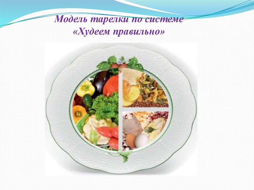 Диетологами диета модель тарелки