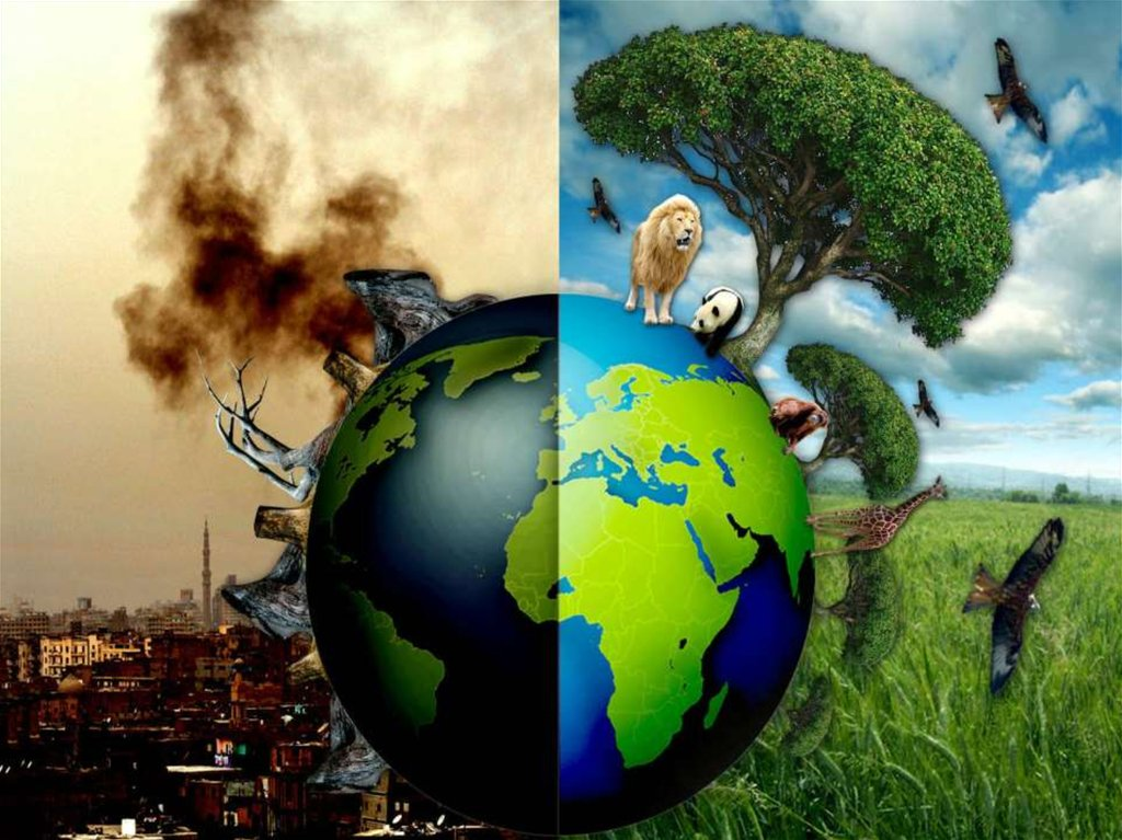 environmental crisis exposed in the world is Natural disasters such as earthquakes, tsunamis, floods, hurricanes, can often come at the least expected time typically the poor are the worst hit for they have the least resources to cope and rebuild.
