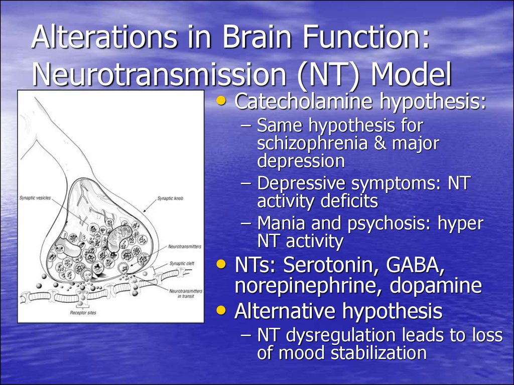 Alterations in Brain Function: Neurotransmission (NT) Model