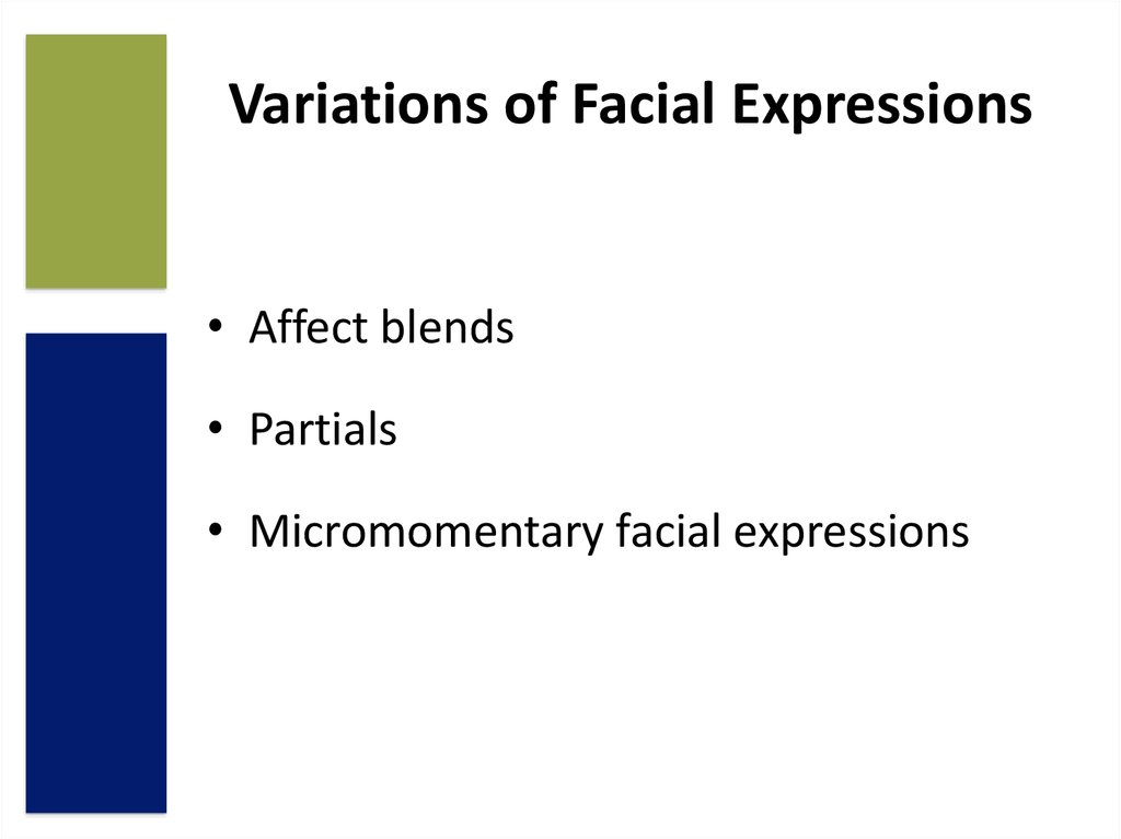 importance of facial expressions
