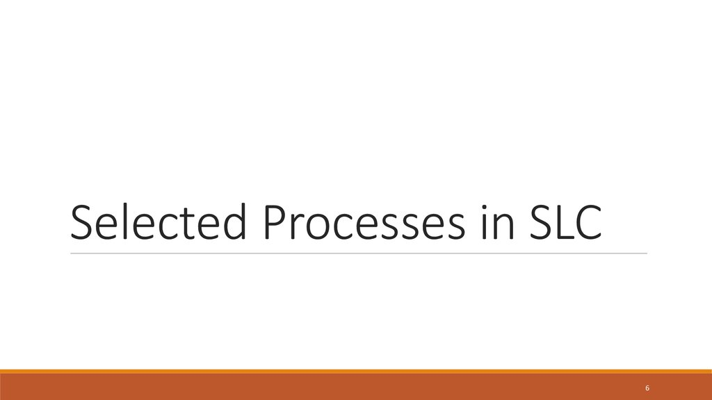 Selected Processes in SLC