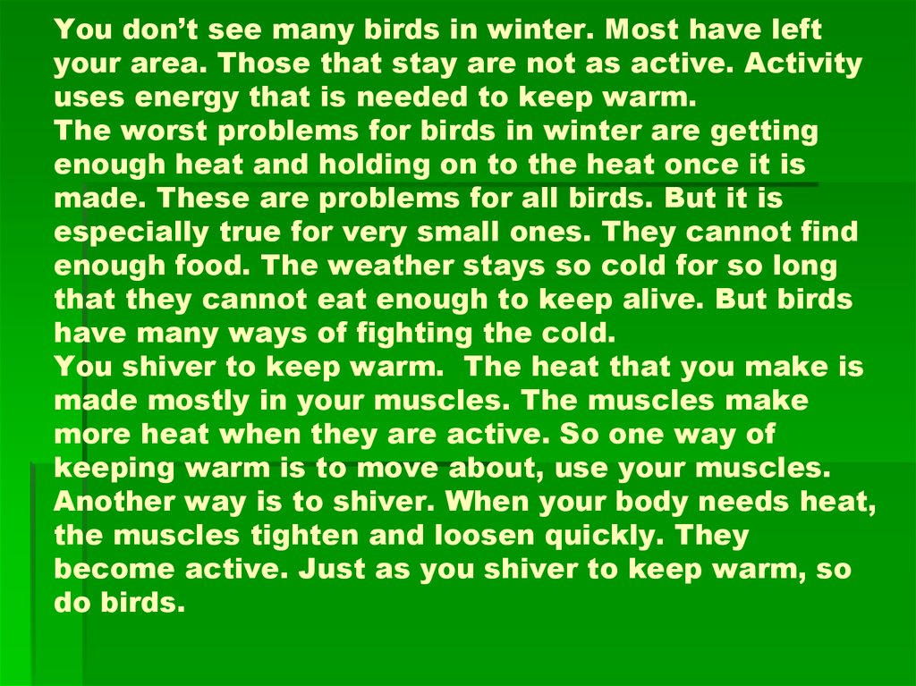 You don't see many birds in winter. Most have left your area. Those that stay are not as active. Activity uses energy that is needed to keep warm. The worst problems for birds in winter are getting enough heat and holding on to the heat once it is made.