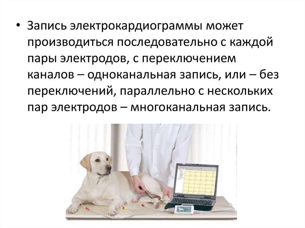 инструментальные методы исследования при гипертонической ...