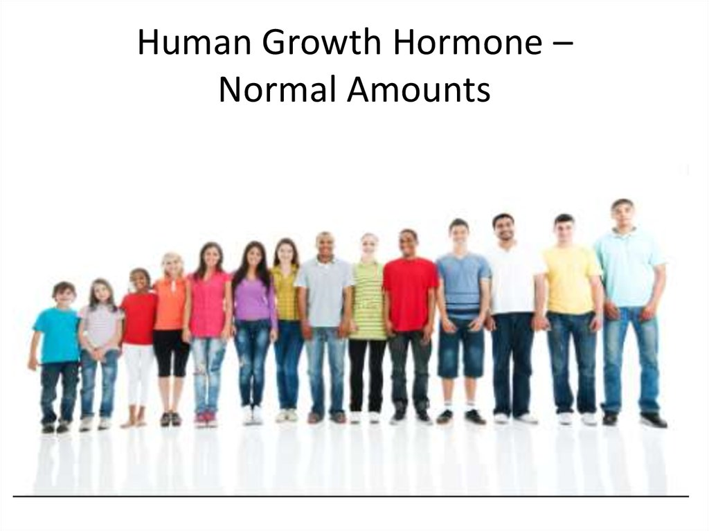 Human Growth Hormone – Normal Amounts