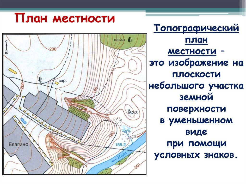 блюдо точно картинки на тему план и карта одна форм