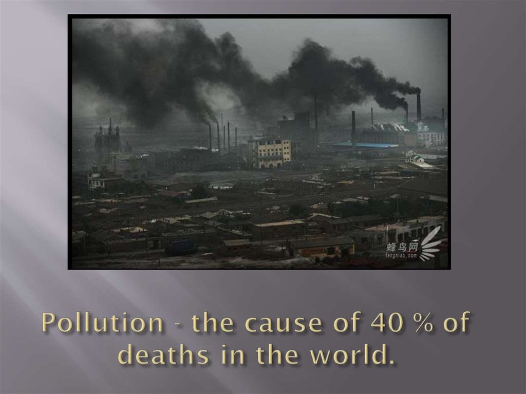 Pollution - the cause of 40 % of deaths in the world.