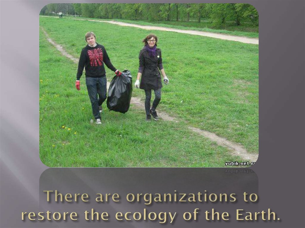 There are organizations to restore the ecology of the Earth.