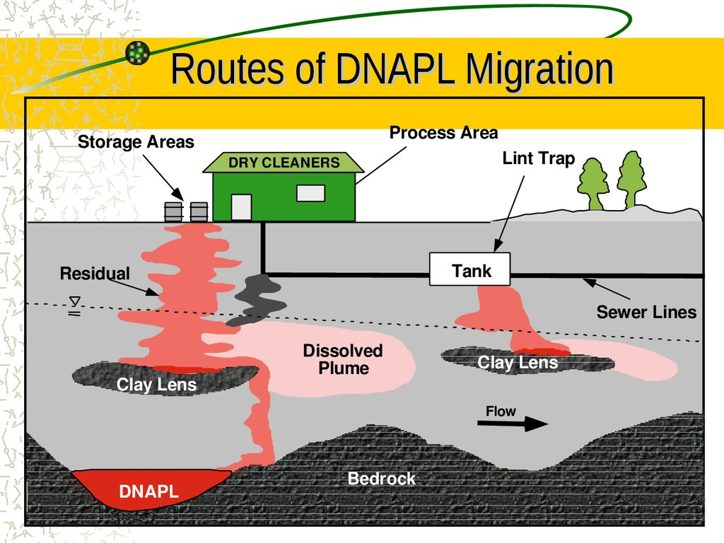 Routes of DNAPL Migration