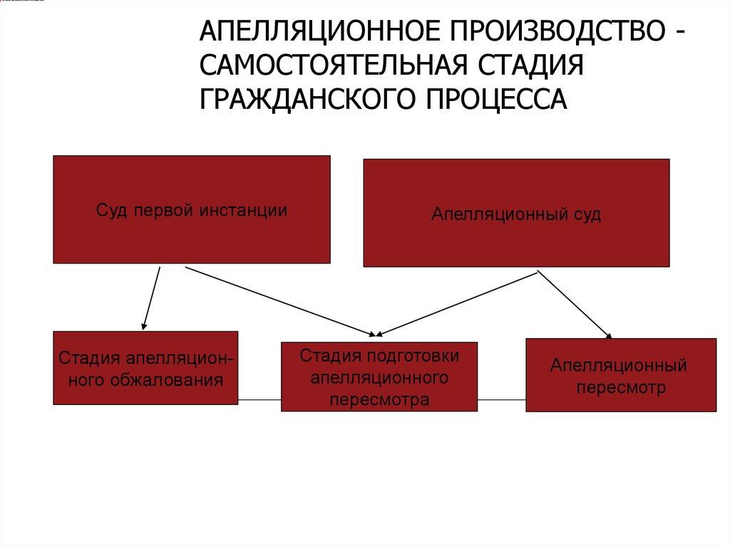 Апелляционная инстанция в гражданском процессе глядел разноцветные
