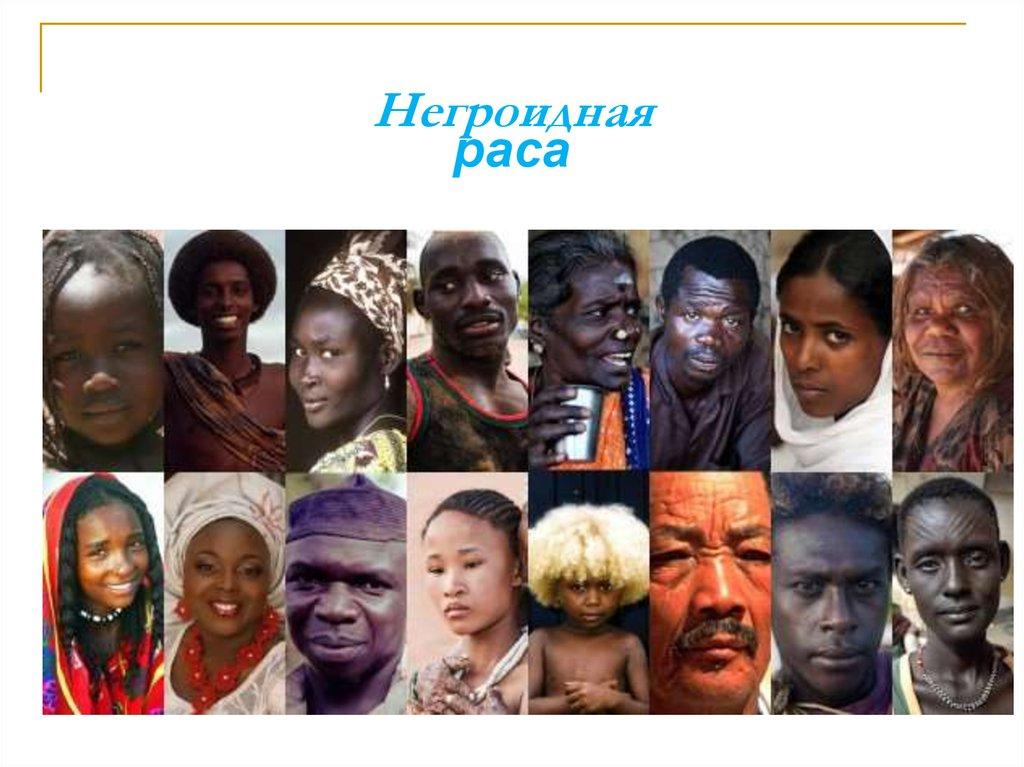Виды негроидной расы