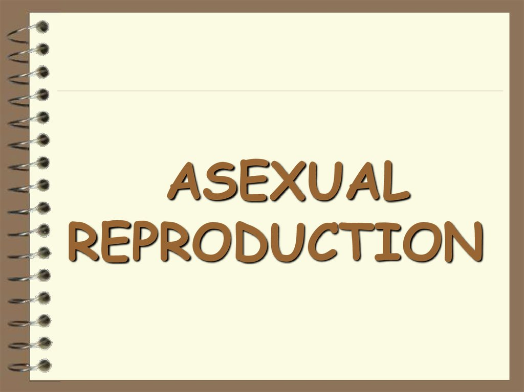 Stolons in asexual reproduction one parent
