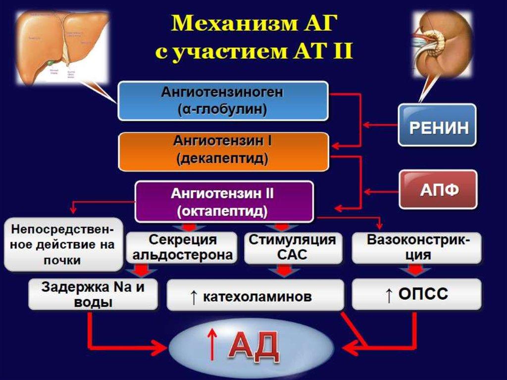 артериальная гипертензия 1 стадии