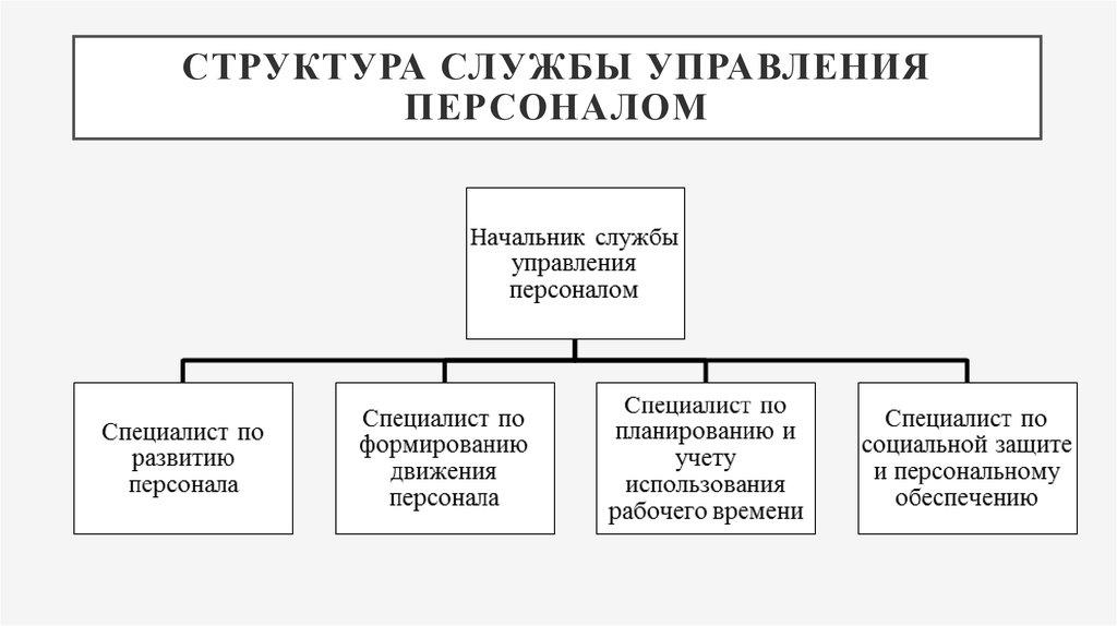 Структура Кадровой Службы Предприятия Шпаргалка