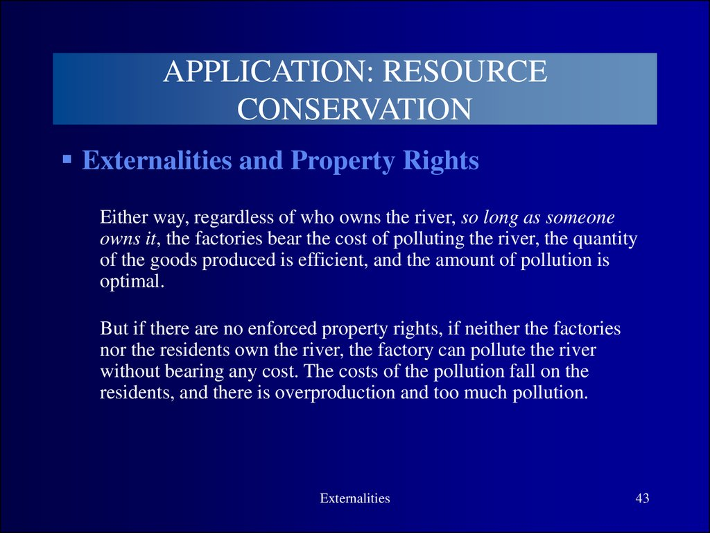 property rights externalities and environmental