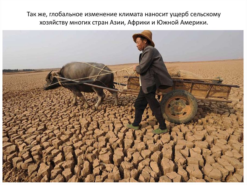 three rural problem in china China has the largest population, 13 billion, about 22% of the world and 870 million, or 2/3rd live in rural area although china has the world third largest area of 960 million.