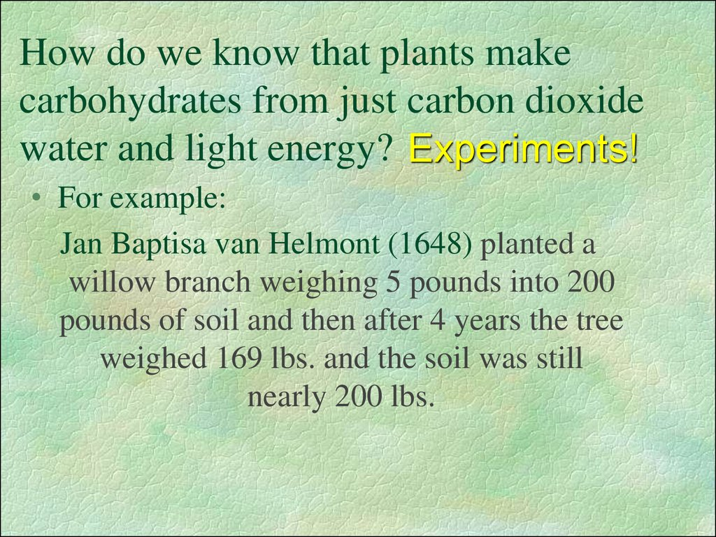 How do we know that plants make carbohydrates from just carbon dioxide water and light energy?