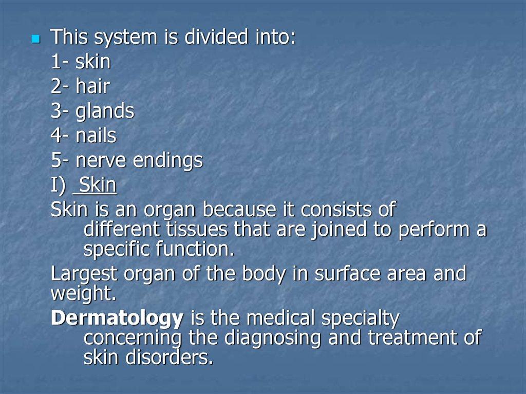 Atemberaubend Skin Anatomy And Physiology Ppt Ideen - Menschliche ...