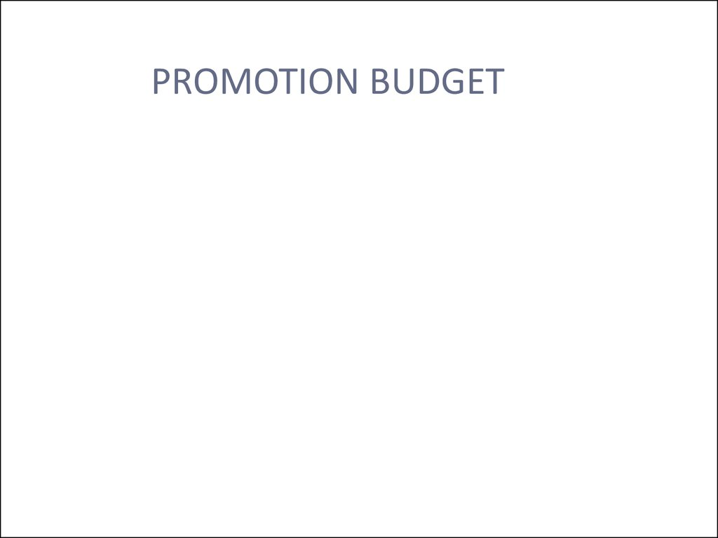 PROMOTION BUDGET
