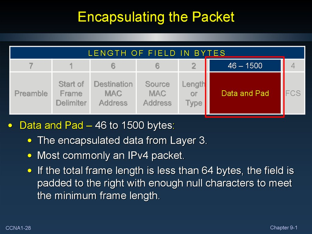 Encapsulating the Packet