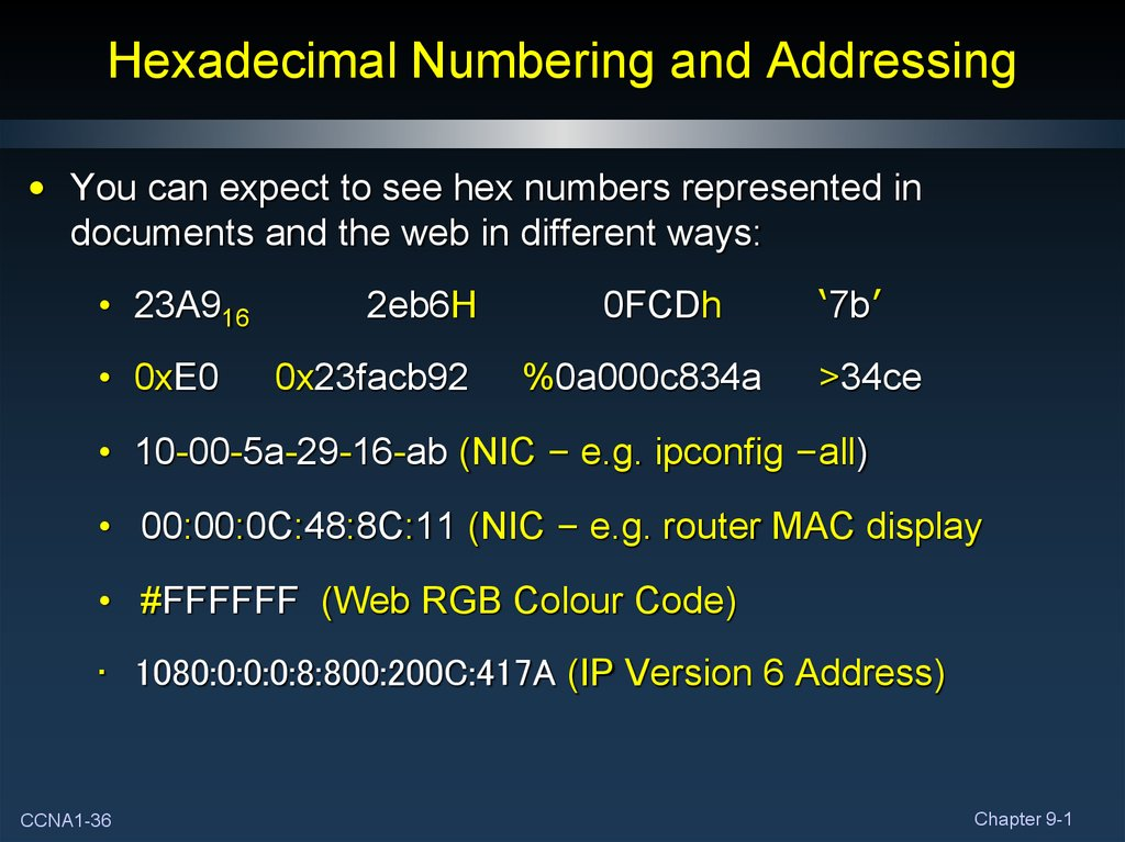 Hexadecimal Numbering and Addressing