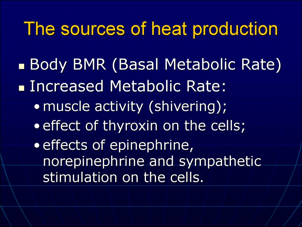 The sources of heat production