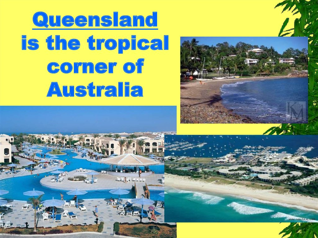 Queensland is the tropical corner of Australia