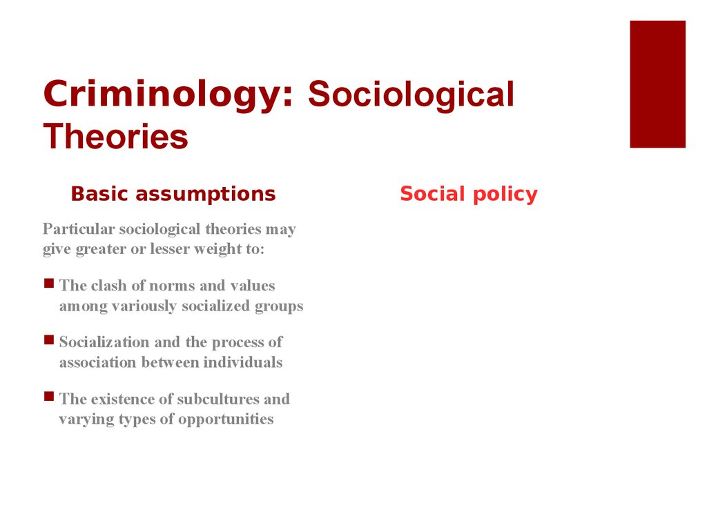 Criminology: Sociological Theories