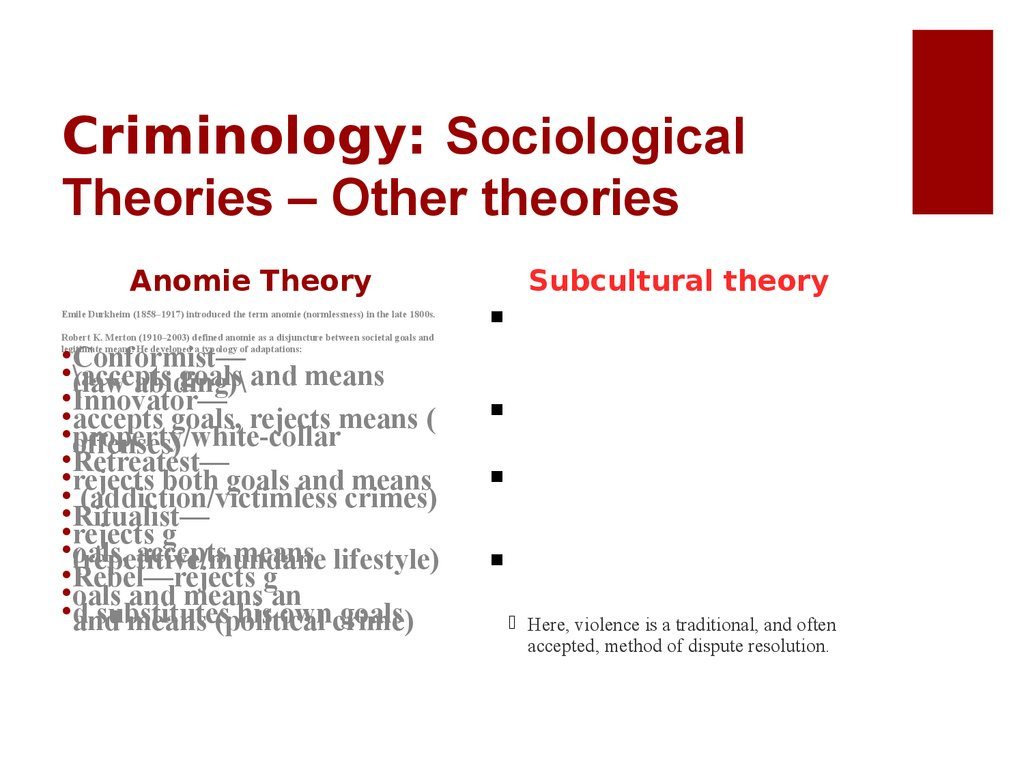 Criminology: Sociological Theories – Other theories