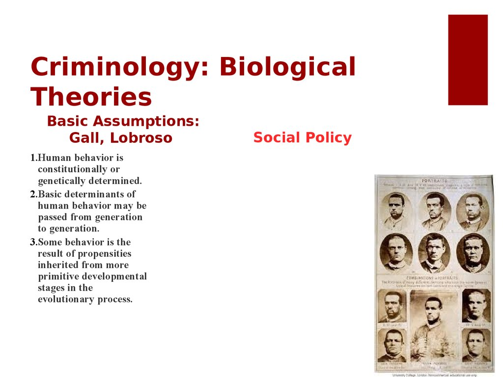 Criminology: Biological Theories