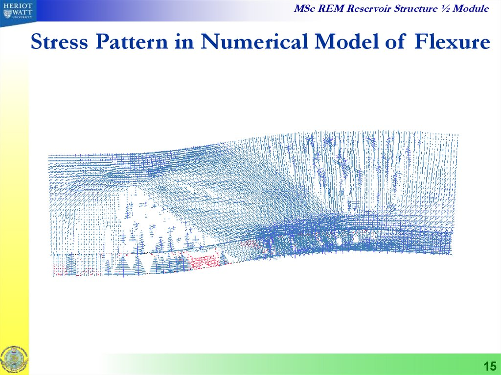Stress Pattern in Numerical Model of Flexure