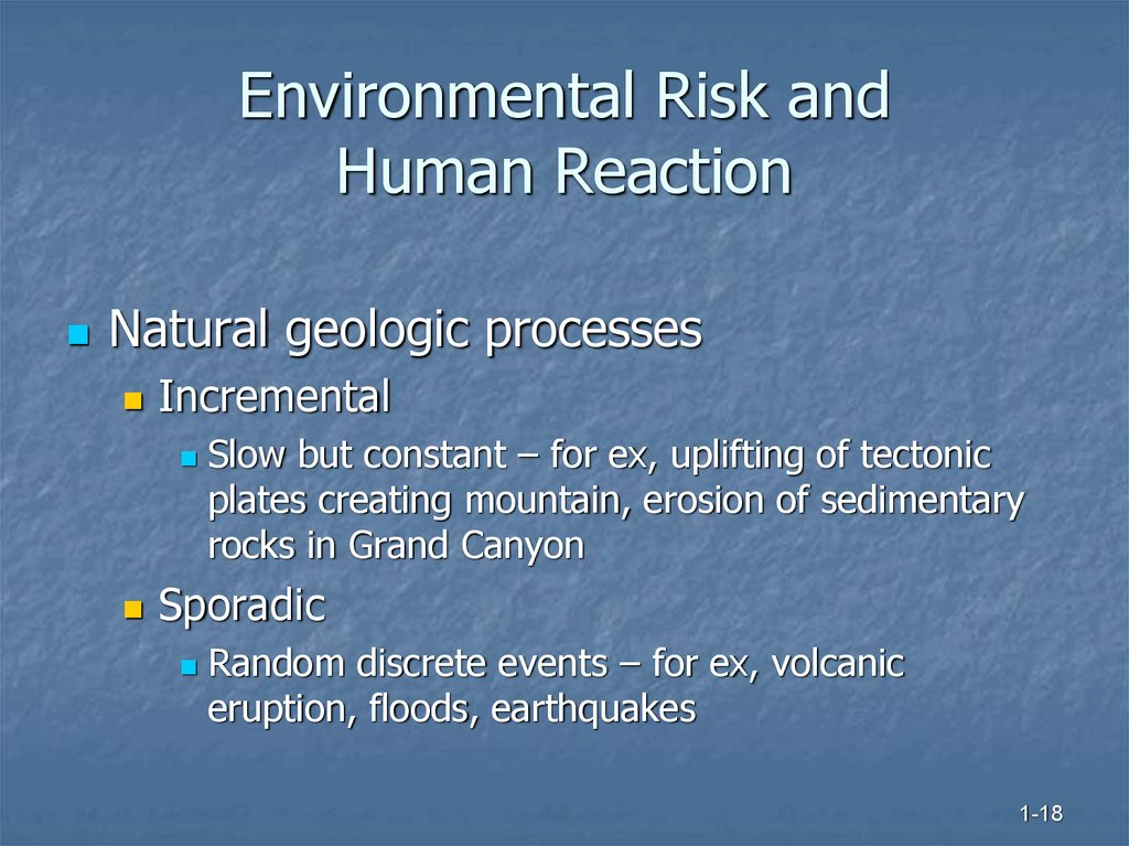 Environmental Risk and Human Reaction