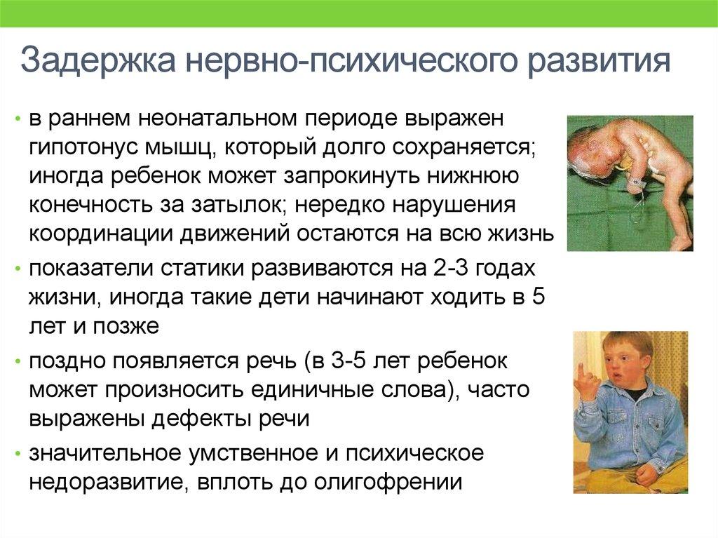 slide 17 Программа Работы Психолога С Учащимися группы Риска И Их Семьями