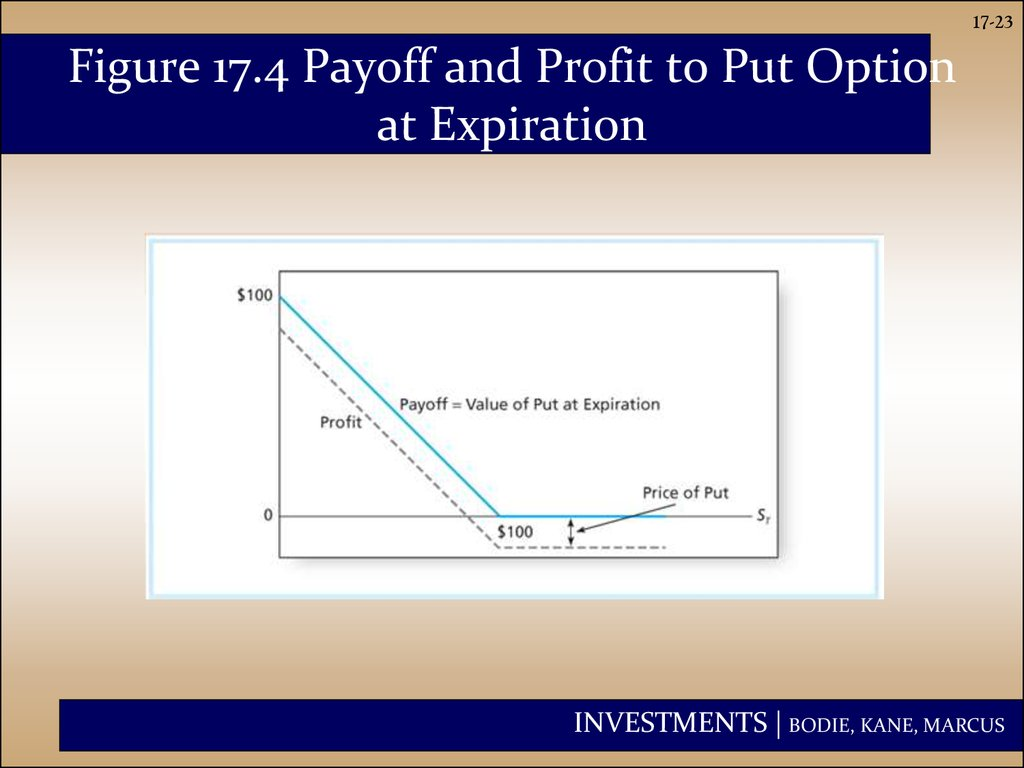 Figure 17.4 Payoff and Profit to Put Option at Expiration
