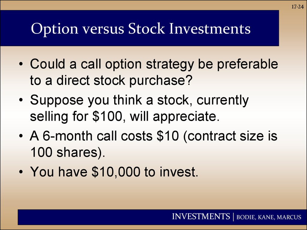 Option versus Stock Investments
