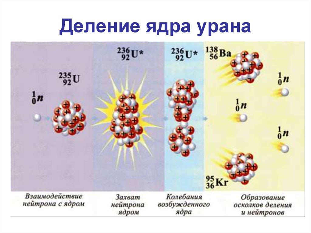 неужели деление ядер урана картинка нет