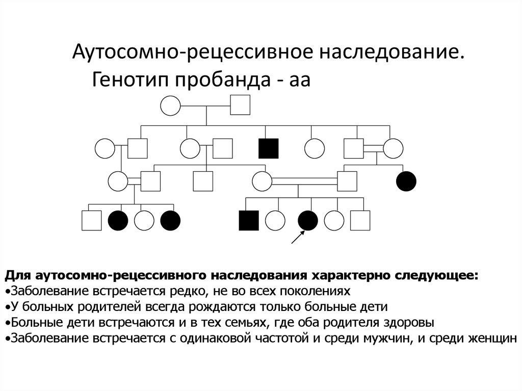 Решение задач на аутосомное наследование сопромат пример решения задач на изгиб эпюры
